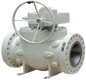 Top entry trunnion ball valve, one piece body.