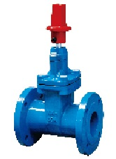 10K Resilient Seat Gate Valve