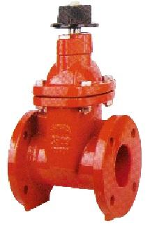 AWWA C509 non rising stem resilient seat gate valve.