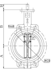 Wafer and Lug Type Butterfly Valve with Pin